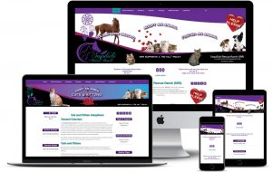Soquilichi Rescue Ranch Website created and powered by Arrested Graphics and Web Solutions