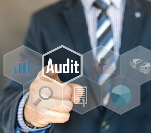 Website auditor image